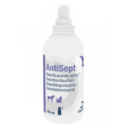 AntiSeptspraymedchlorhexidin100ml-31