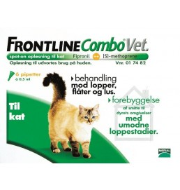 Frontlinekat6stk-20