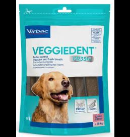 VeggieDentL-20