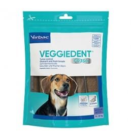 VeggieDentM-20