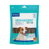 VeggieDentS-01